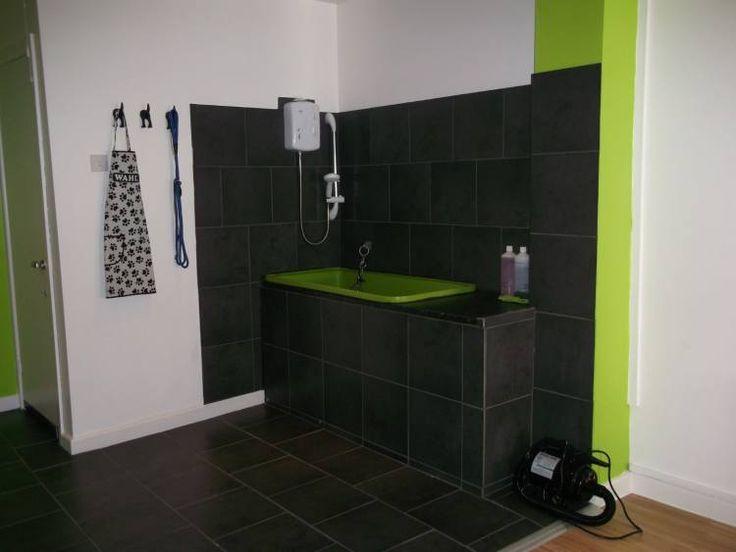 34 best pet bath ideas for basement images on pinterest for A perfect pet salon