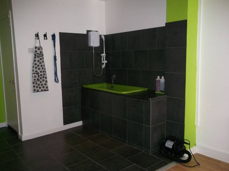 1000 images about pet bath ideas for basement on for A bath and a biscuit grooming salon