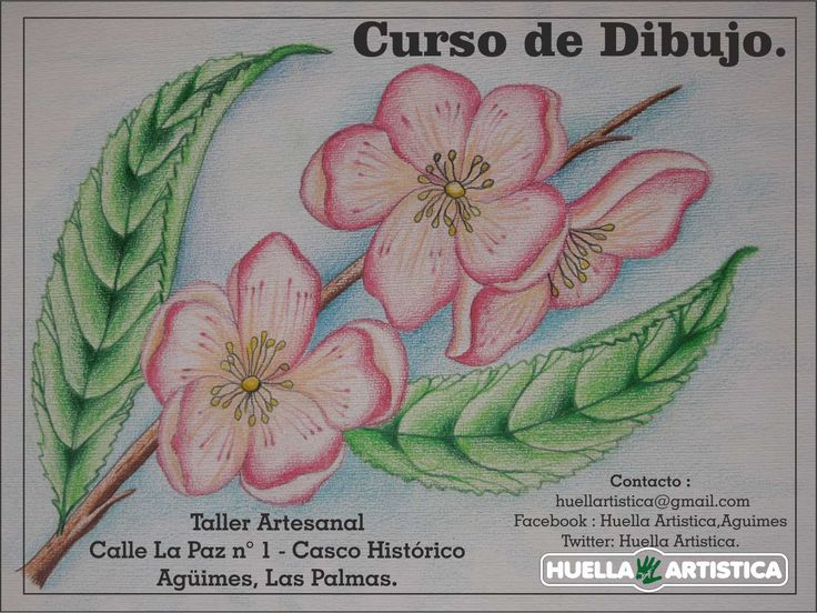 Curso de Dibujo para todos. Septiembre 2014 .... 30 € al mes. Solo : Huella Artística..