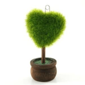 Moss Heart Favour #valentines
