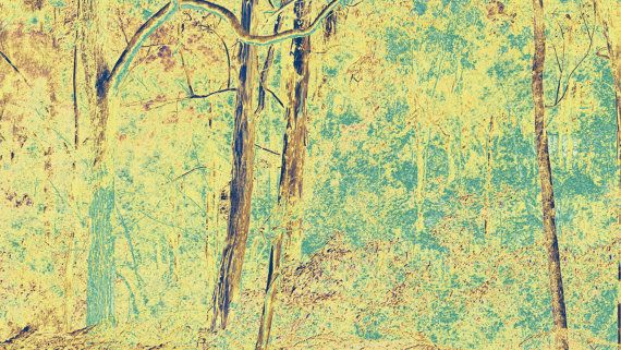 Australian Landscape by BlackbirdArtDesign on Etsy, $35.00 Stretched Canvas 30 x 42cm