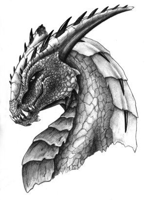 dragon_head_by_flippy64.jpg (300×411)