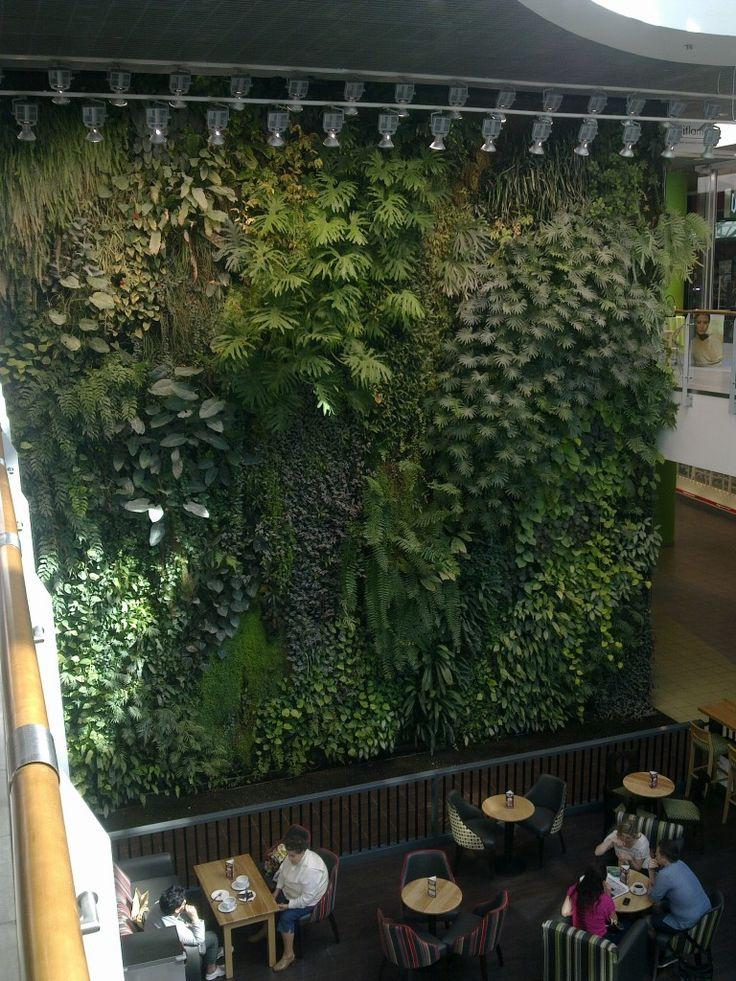 Ogród Wertykalny - Galeria Przymorze
