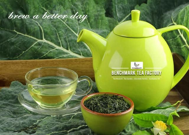 Brew your day with Benchmark Tea Benchmark is the certified #tea production factory at #Niligiris, which stands special from others. Our tea is made out of best tea leaves and processed under steaming method with best technology. We ensure that our #greentea is rich in anti-oxidants and best in its #taste. Brewed with love @ #BenchmarkTeaFactory, Tea Museum, Tea Garden, Chocolate Factory & Eucalyptus Oil Melkodupmund, Ooty The Nilgiris- 643 002 Phone:7667067374.