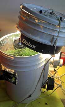 Ekrof's first Space Bucket. Source: http://www.growweedeasy.com/marijuana-space-buckets