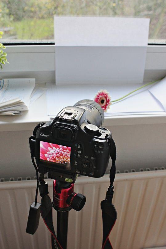 Low budget home studio | social media Fotografie Hacks für Dein Blog, Deine Webseite oder Deine Social Media Marketing |