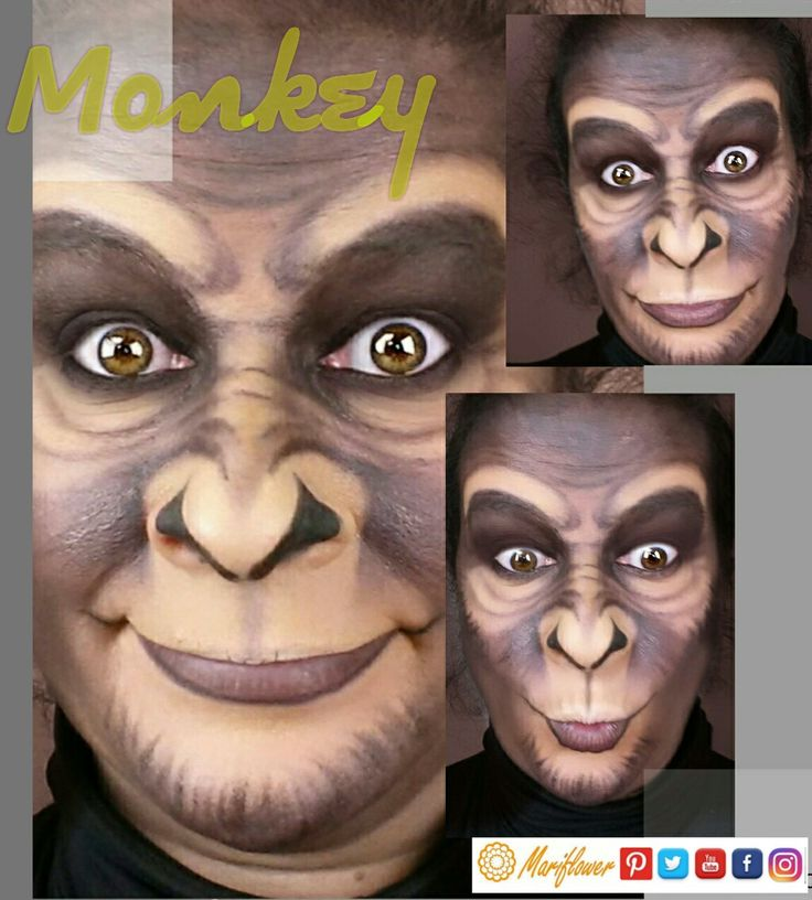 Makeup Monkey.  No te pierdas los tutoriales!Follow me! 👍#monkey #mono #scimmia #makeupmokey #maquillajemono #truccoscimmia #funny #divertente #divertido