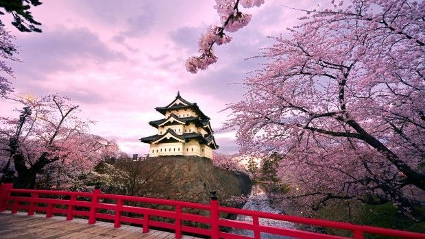 Garden Wide High Resolution Spring Wallpaper Cool Places To Visit Scenery Wallpaper Japan Guide