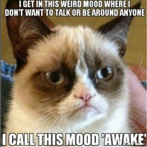 grumpy cat RN funny nurse meme | Suck it up baby & put on the big girl pants