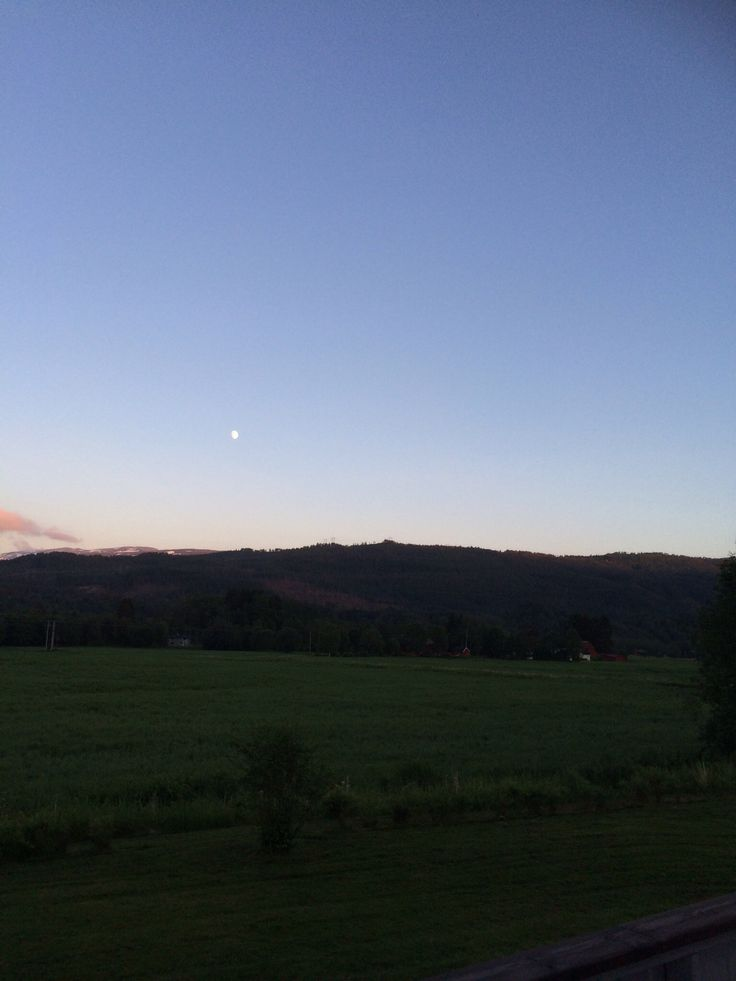 Hot summer night and the moon