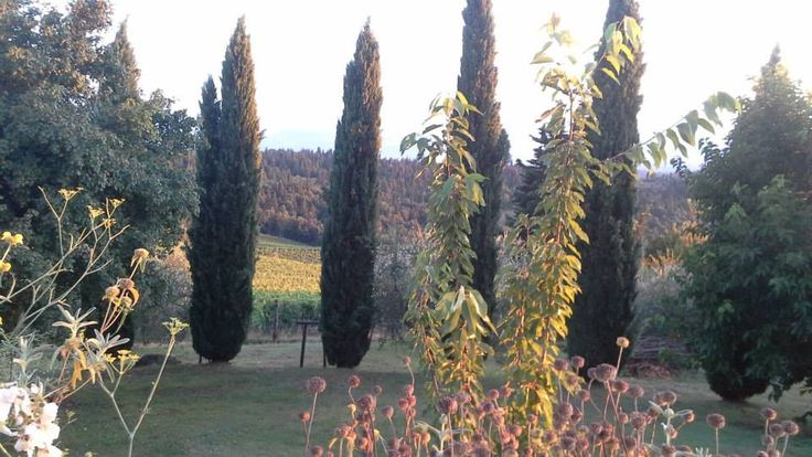 The sun is back at sunset ... after a grey and cold day #BedandBreakfast Antico Podere Marciano #Chianti #Tuscany
