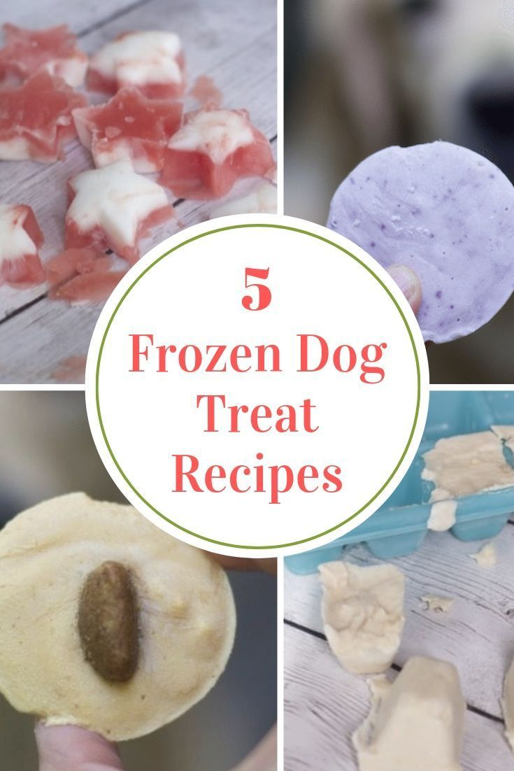 Frozen Watermelon Yogurt Dog Treats Recipe Dog Biscuit Recipes