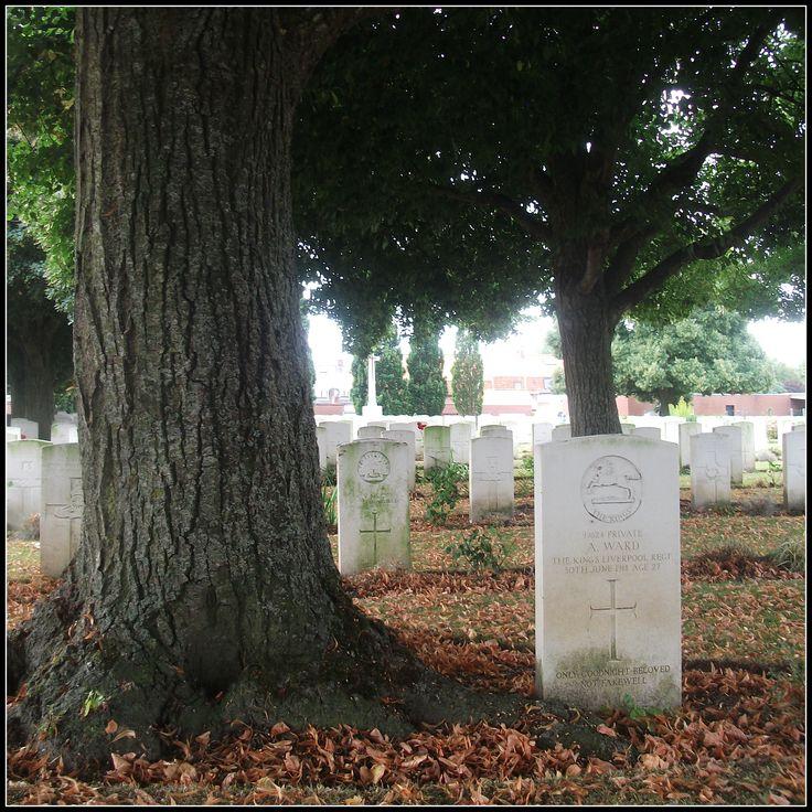 Belgian Battery Corner Cemetery, Ieper (Belgium)