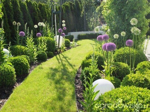 Mój wymarzony ogród - strona 158 - Forum ogrodnicze - Ogrodowisko
