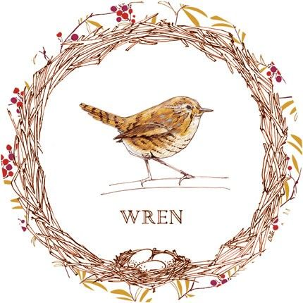 15 best images about wren tattoo on pinterest simple drawings bird illustration and originals. Black Bedroom Furniture Sets. Home Design Ideas