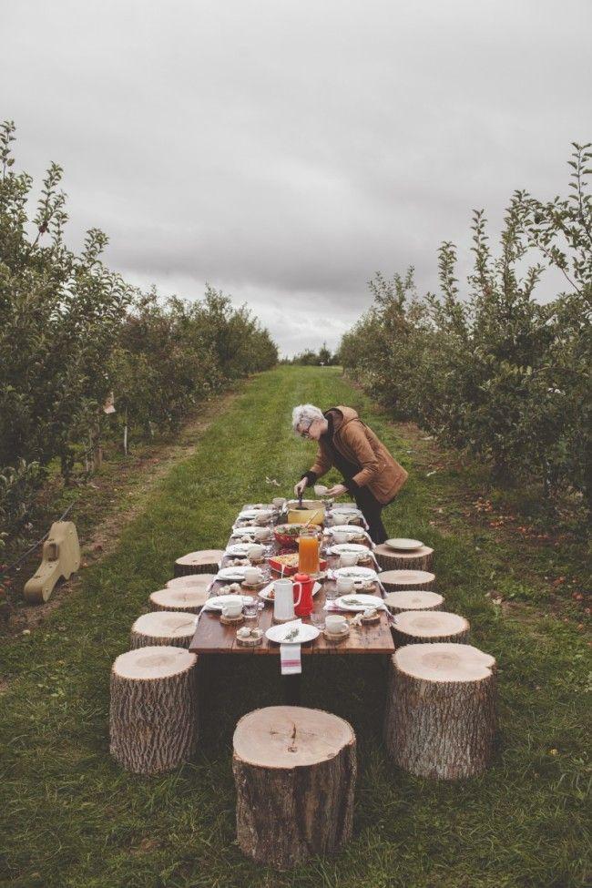 Orchard Brunch