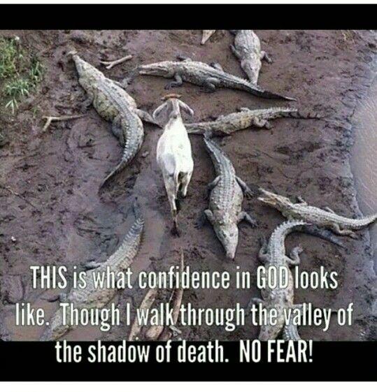 Aunque ande en Valle de Sombra de Muerte...no temere mal alguno por tu estarás conmigo.