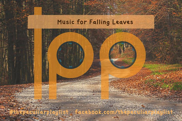 Music for Falling Leaves Create your own themed playlist and see ours at http://on.fb.me/1RqDQQu Visit www.facebook.com/thepeculiarplaylist for more information! #thepeculiarplaylist #music #mixtape #playlist