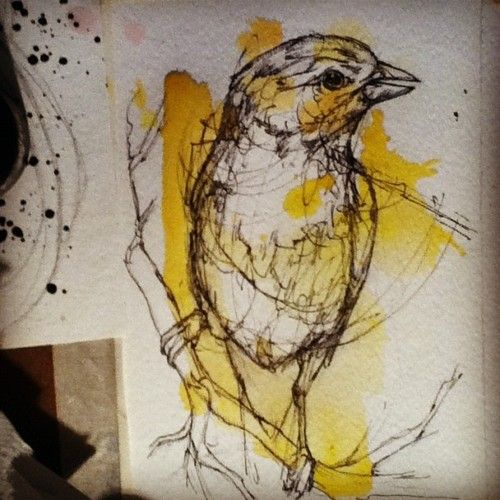 Abby Diamond knows her watercolor birdss