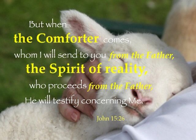 John 15:26 But when the Comforter comes, whom I will send to you from the Father, the Spirit of reality, who proceeds from the Father, He will testify concerning Me. More on this topic via, www.agodman.com