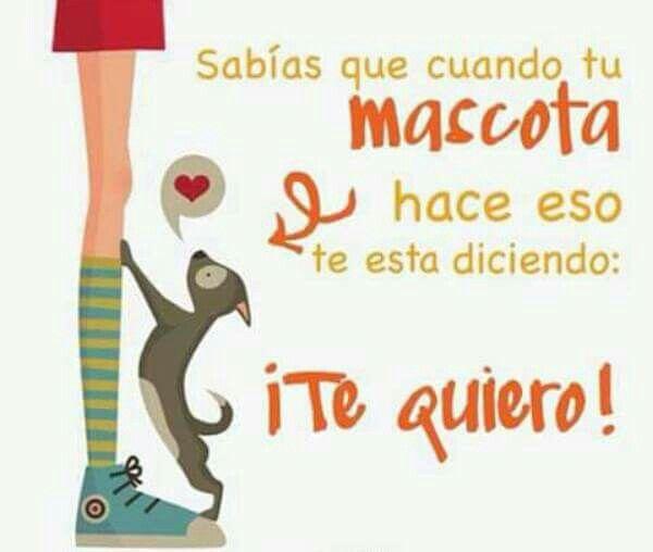 Te quiero!!!