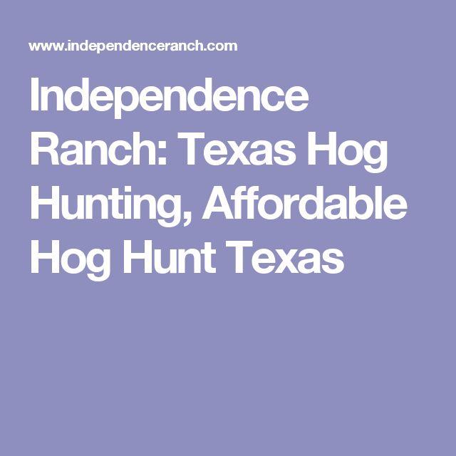 Independence Ranch: Texas Hog Hunting, Affordable Hog Hunt Texas