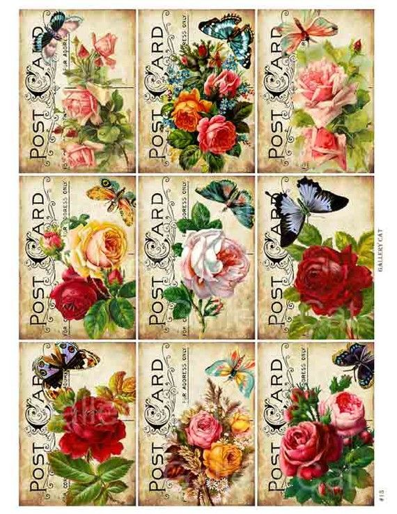 Victorian Roses with Butterfly on Old Postcard Digital Collage