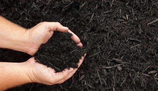 Le compost résulte de la décomposition de déchets organiques. Empilés en couches, les déchets fermentent et les micro-organismes contenus dans le futur compost réduisent. La matière organique est un produit naturel et fertilisant. Facile à installer dans un jardin, en un tas, on peut même aménager un coin à compost sur une terrasse ou un balcon.