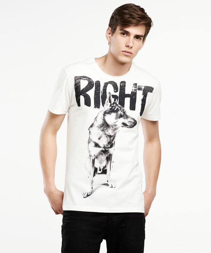 Wolfdog men's t-shirt