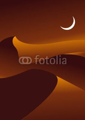 Desert Night