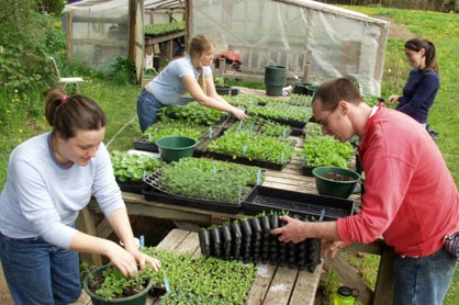 The Evergreen State College, Olympia, Washington.  Kitchen Gardens and Edible Forest Gardens  Sustainable Food Options On and off- Campus