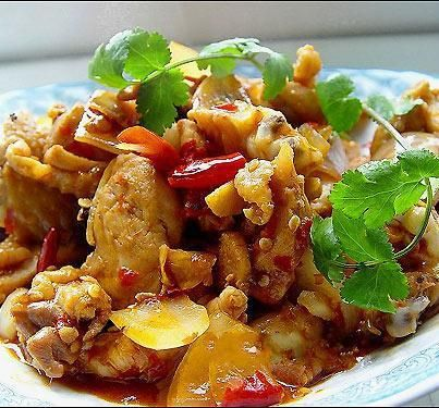 218 best asian chicken images on pinterest chinese food cooking good asian food spicy chicken with onion stir fry recipe forumfinder Choice Image
