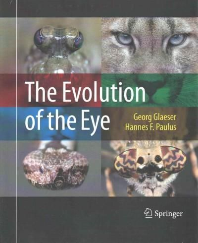 The Evolution of the Eye