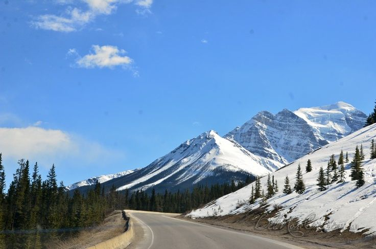 Across Canada Roadtrip, Alberta Part 2