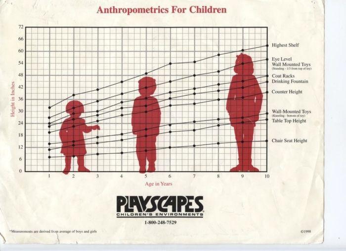 8 Best Childrens Anthropometrics Images On Pinterest
