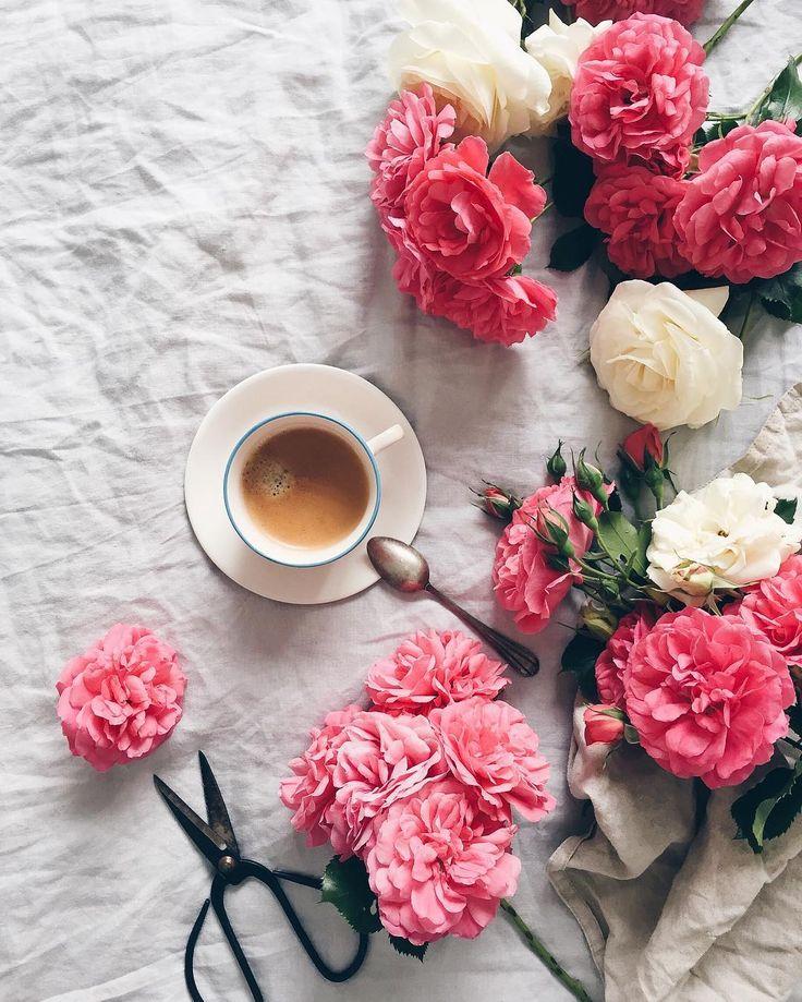 Смешные картинки, картинки доброе утро кофе и цветы