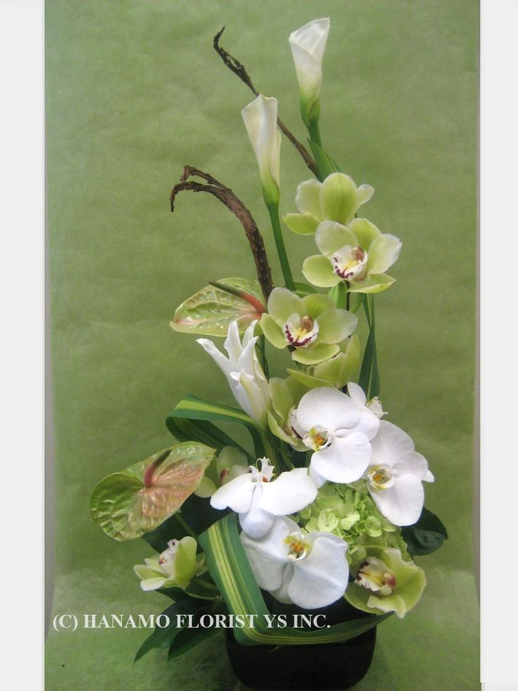 ikebana with orchids