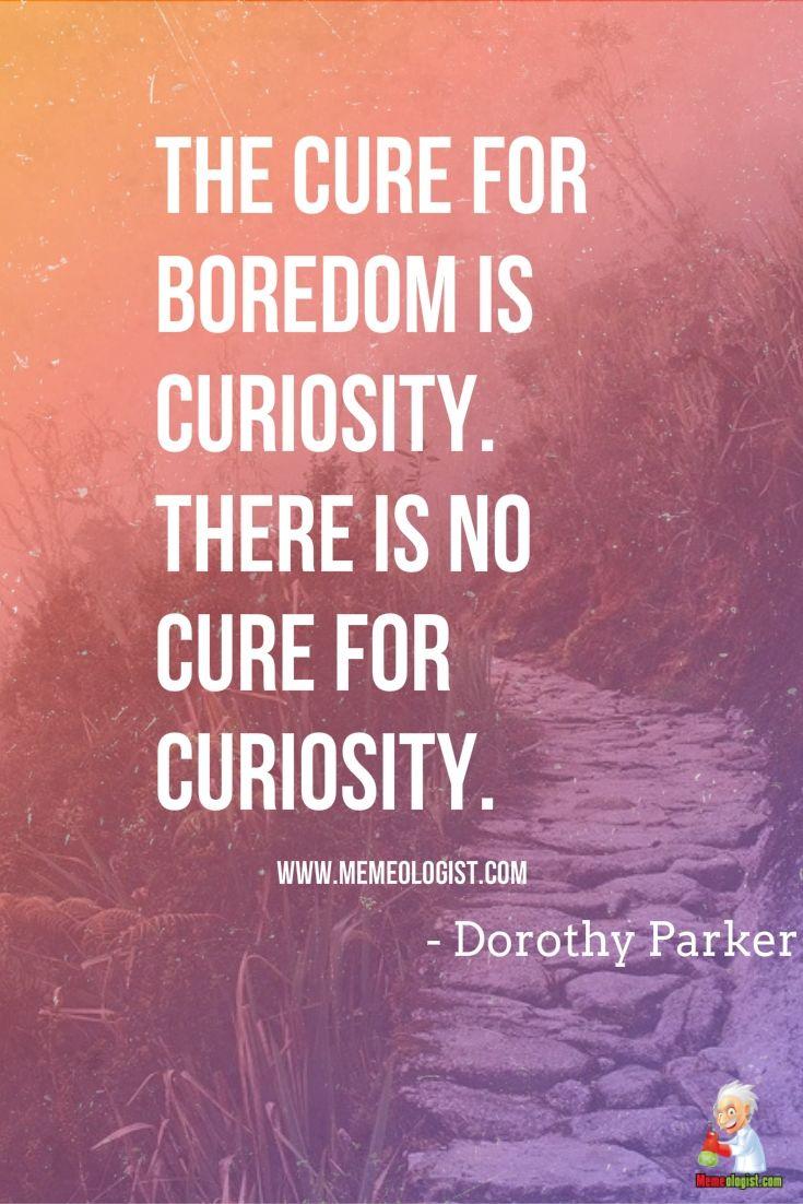 Funny Curiosity Quote Curiosity Quotes Boredom Quotes Self Awareness Quotes
