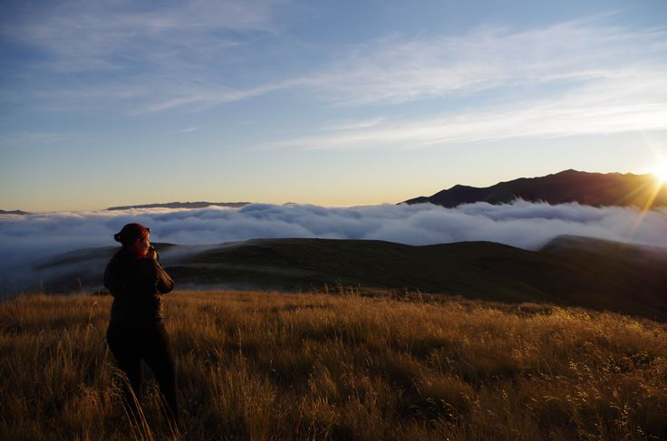 Dawn view from Mt Robert, Nelson Lakes National Park, New Zealand