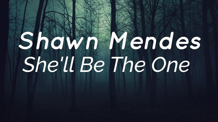 Shawn Mendes - She'll Be The One Lyrics (NEW SONG!!)