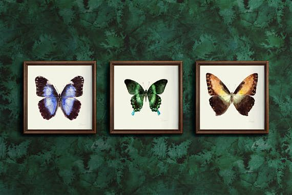 3 watercolor hand painting butterfly set. 3 watercolor hand painting butterfly set. Download printable high resolution jpg. Wall decor art.   butterfly, watercolor print, hand painting, wall art, jpg, printable, many set, home decor, downable art, digital set, square, instant download, blue, green