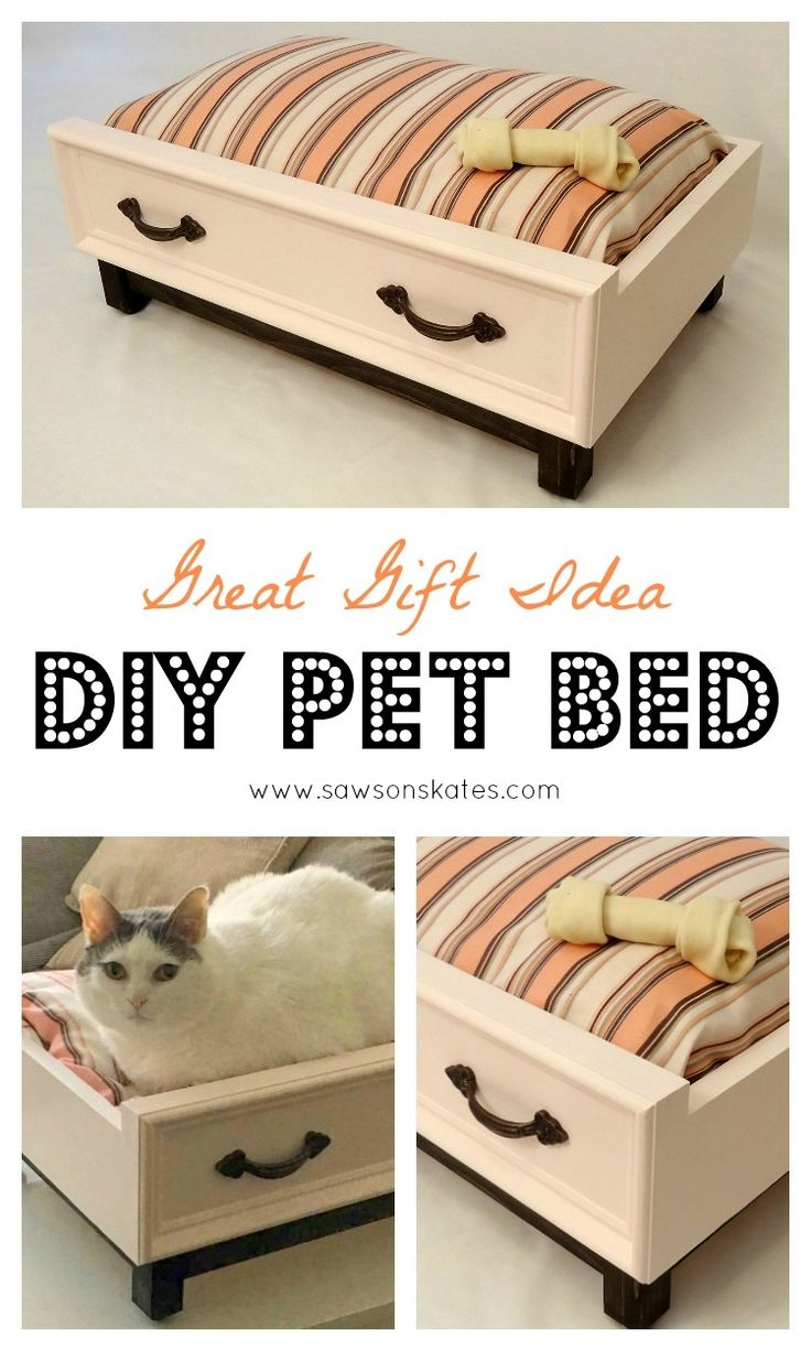 11 diy gift ideas pinterest diy dog bed with an upcycled drawer look need a gift for negle Choice Image
