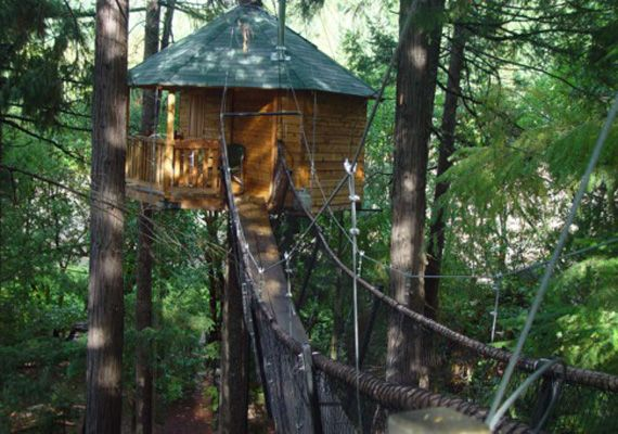 Out n'About is a true bed & breakfast in the trees! Sleep 32 feet off the ground in Cave Junction, Oregon and enjoy the nature that surrounds you. More than just a backyard campout, the 'treesort' has onsite activities such as horseback riding, zip line rides, art classes and full service spa.