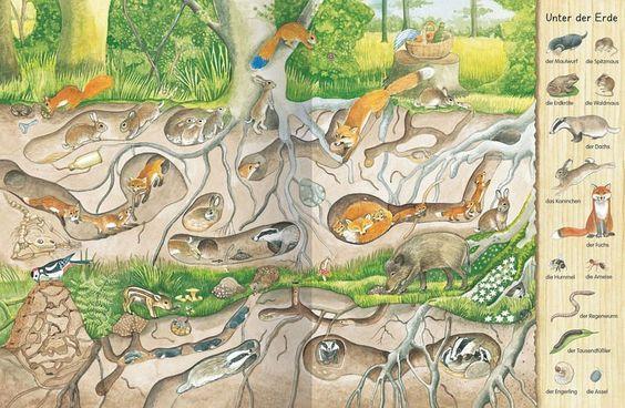 tekening voor onder onze seizoensboom; onder de grond
