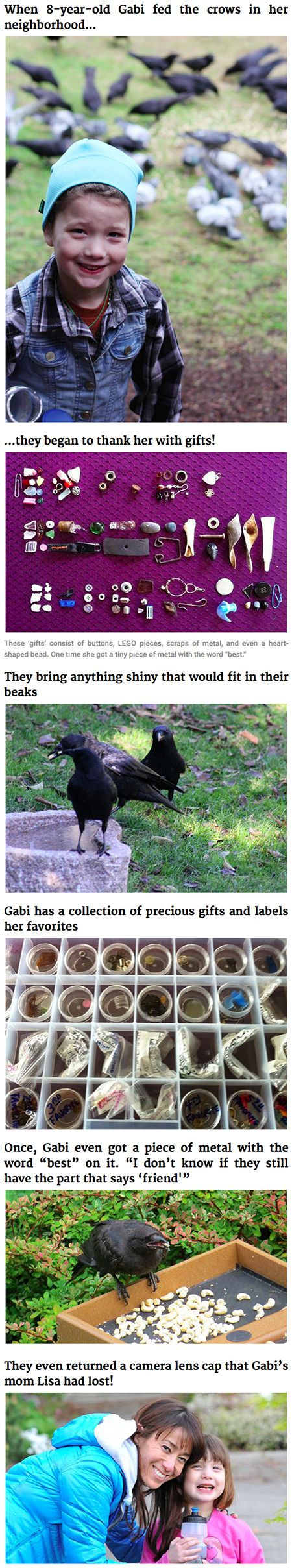 This girl receives gifts from the crows she has been feeding since she was four years old. <<< She is a disney princess
