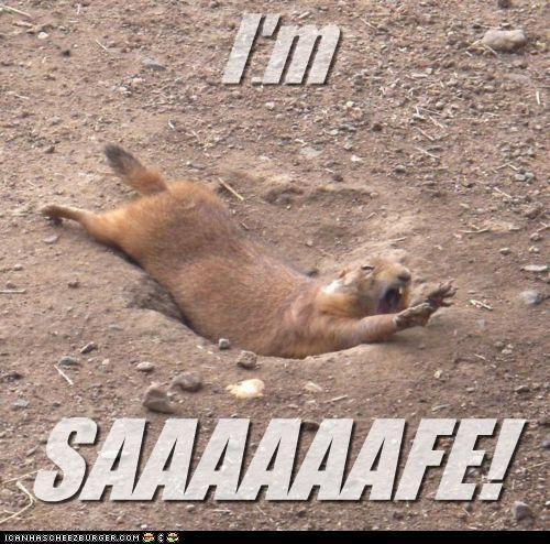 HAHHAHAHHAHAHHAHAAHAHHAHHAHAHHAHAHAHHAHAHHAHA softball humor...