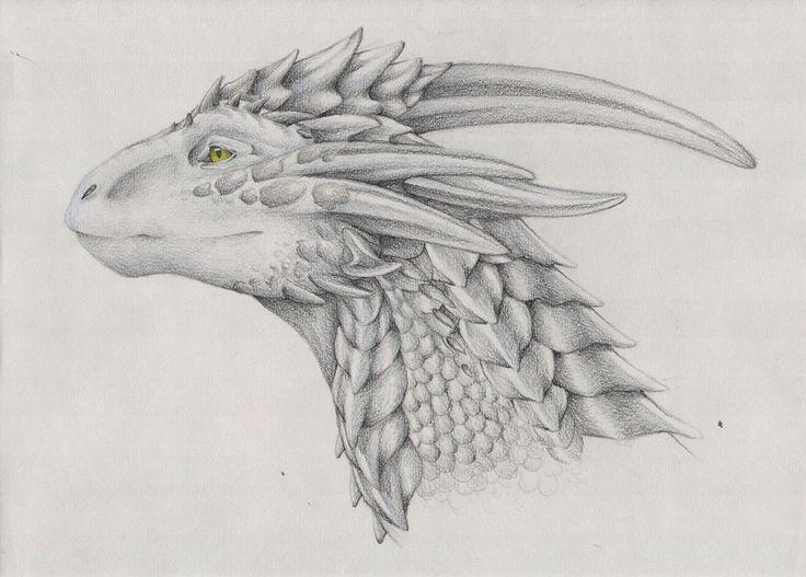 21+ Realistic Dragon Drawings   Free & Premium Creatives