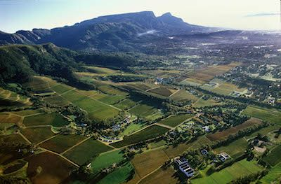 The Constantia Wine Valley: with fascinating wine-bits