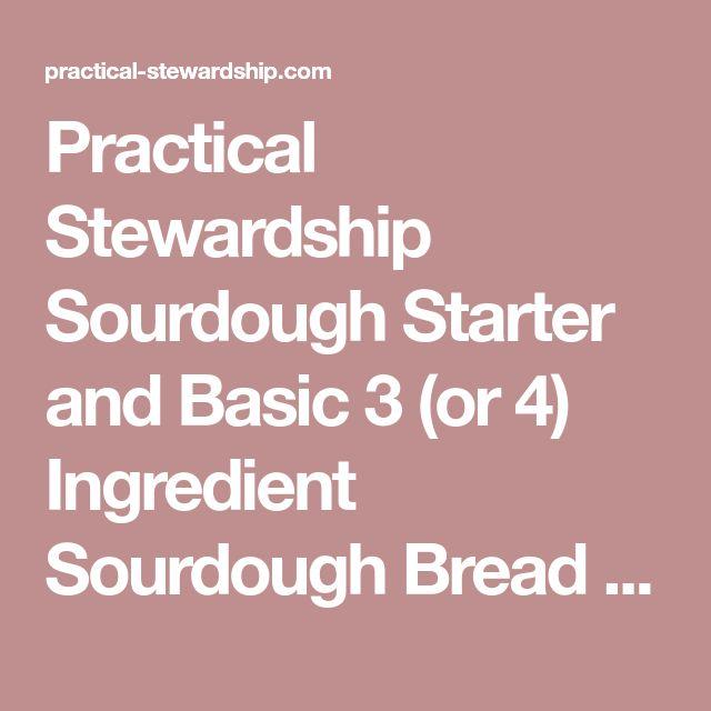 Sourdough Starter and Basic 3 (or 4) Ingredient Sourdough Bread Recipe – Julie B