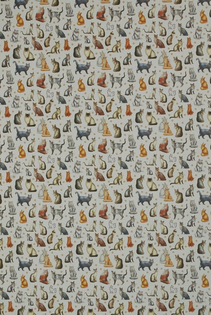 Print Lotsa Cats
